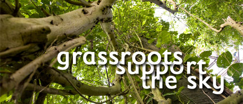 grassroots support the sky