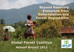 GFC Annual Report 2011