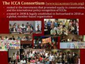 Presentation of the ICCA Consortium Programme