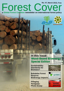 forestcover-front-cover