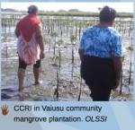 community conservation samoa 2