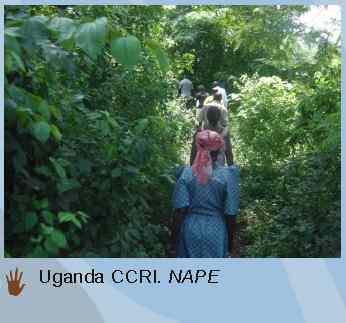 community conservation uganda