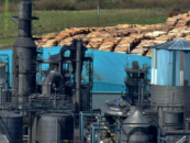 Biomyths: Bioenergy carbon neutrality myth is a time bomb under climate deal