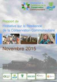rapport ccri novembre 2015