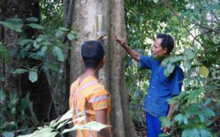 mainstreaming-biodiversity-earth-day-