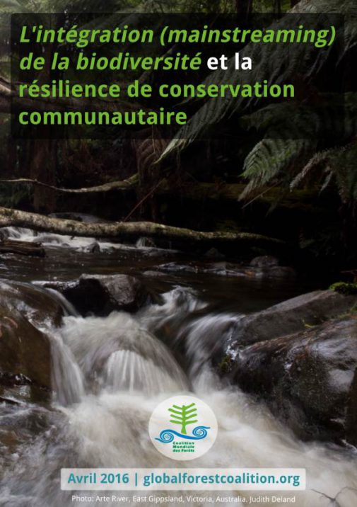 mainstreaming-biodiversity-paper-FR