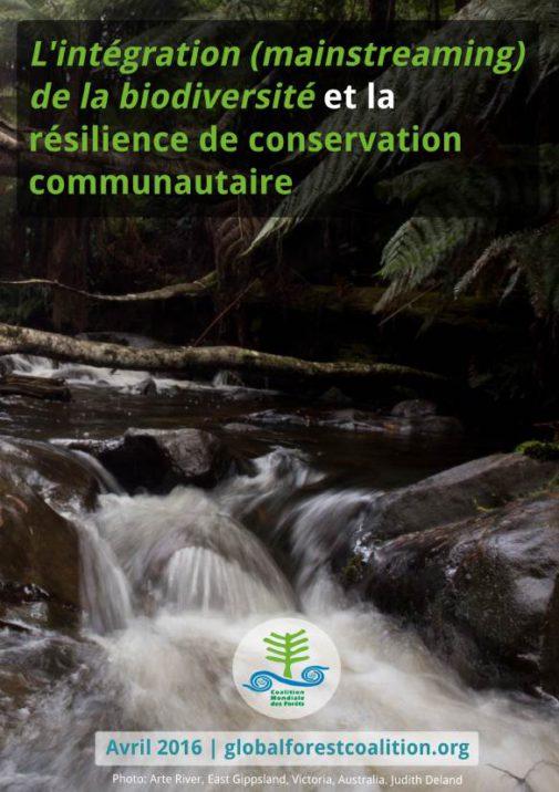 mainstreaming-biodiversity-paper-FR