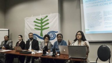 Delving into Community Conservation and ICCAs at SBSTTA-20