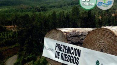 Cobertura Forestal 50: Los ODS y los bosques: ¿amenaza u oportunidad única?