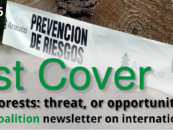 Forest Cover 50 – The SDGs and forests: threat, or opportunity of a lifetime?
