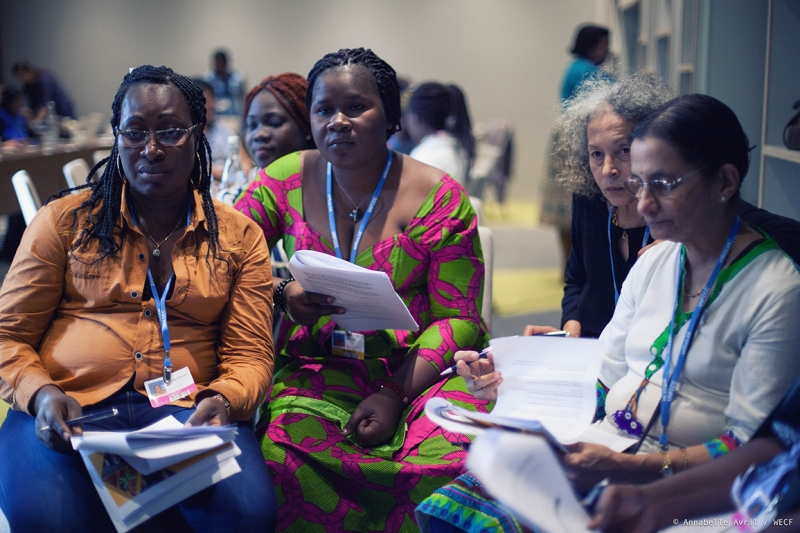 women 2030 meeting cop22