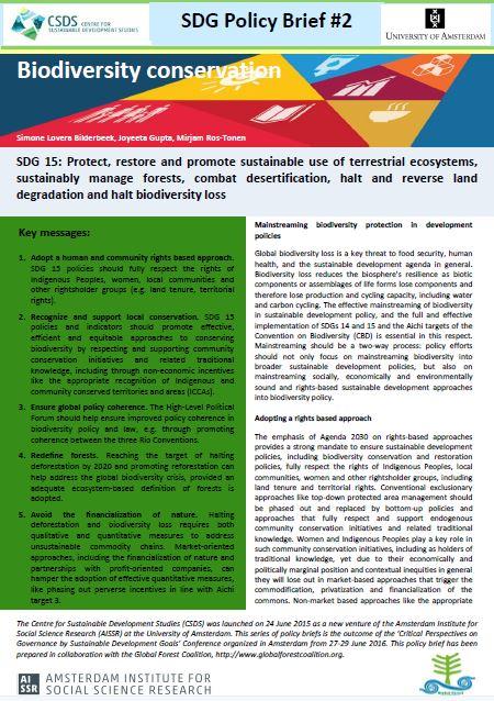 SDG policy brief