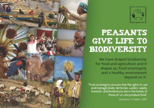 biodiversitybrochure_page_01_revpmm-kopie