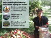 Forest Cover 51 – Mainstreaming biodiversity? Mainstream equity and justice