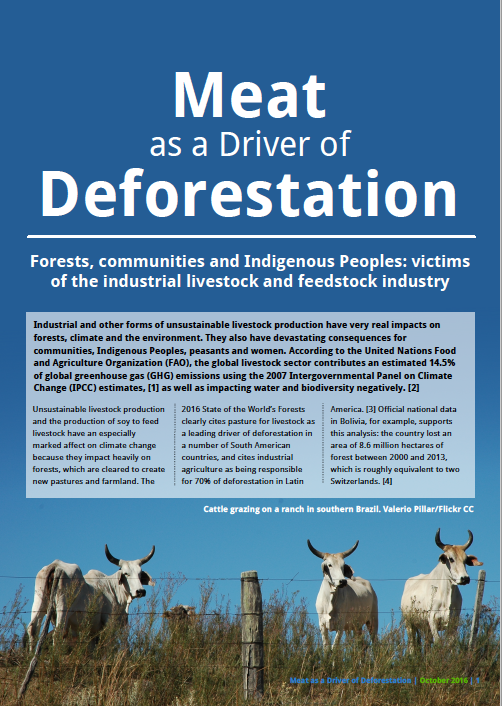 Global Forest Coalition Meat as a Driver of Deforestation