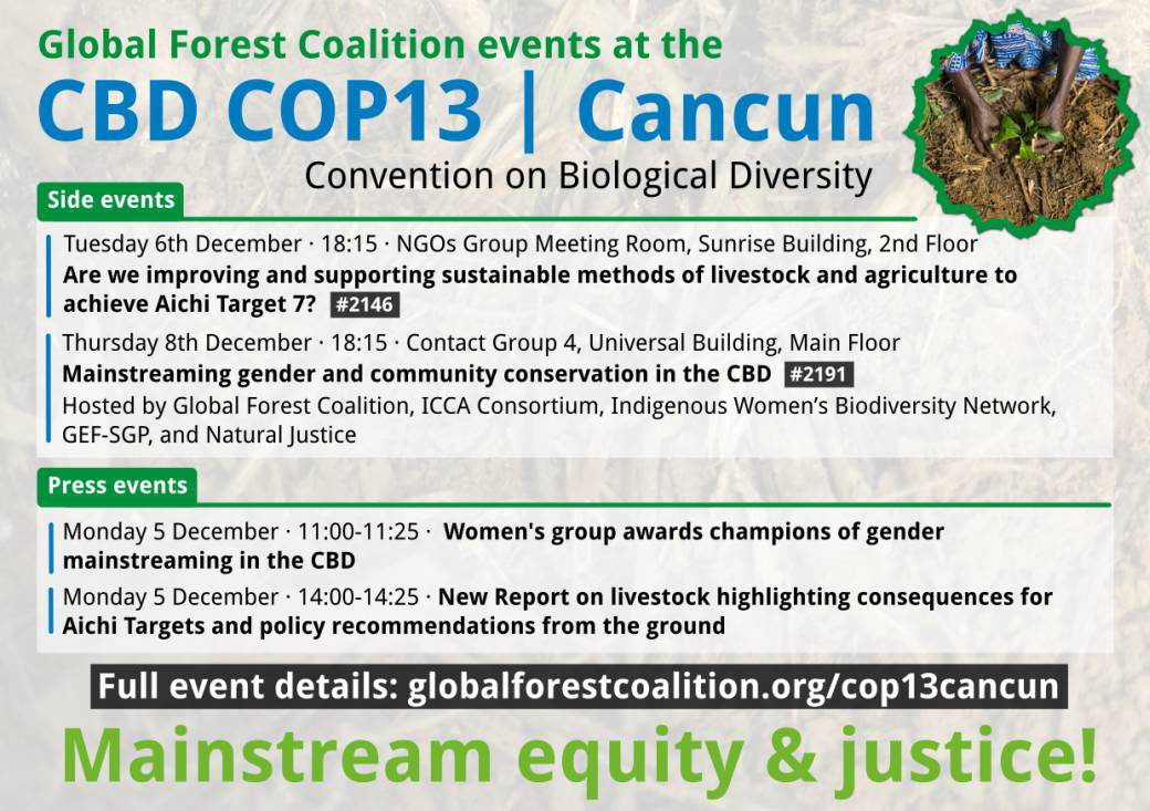 COP 13 Cancun flyer GFC