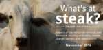 What's at steak? The real cost of meat