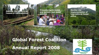 GFC Annual Report 2008