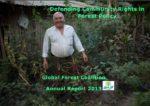 GFC Annual Report 2013