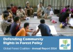 GFC Annual Report 2014