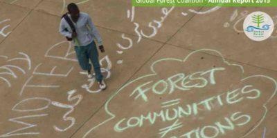 GFC Annual Report 2015