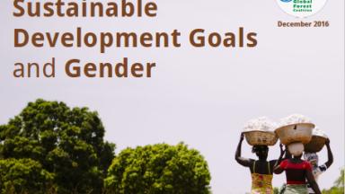 Introducción sobre el Informe de los Objetivos de Desarrollo Sostenible y Género de la Coalición Mundial por los Bosques