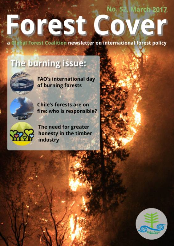 forest cover 52 the burning issue