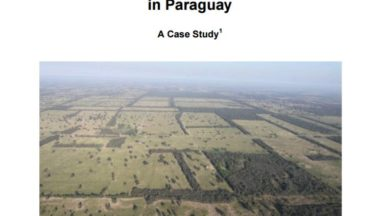 The Impacts of Unsustainable Livestock Farming and Soybean Production in Paraguay – A Case Study