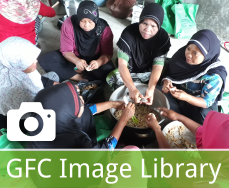 GFC Image Library
