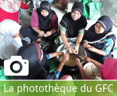 La phototheque du GFC