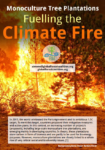 Monoculture Tree Plantations: Fuelling the Climate Fire