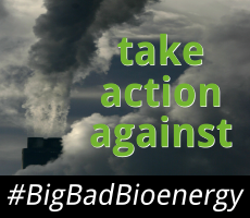 Take Action against BigBadBioenergy