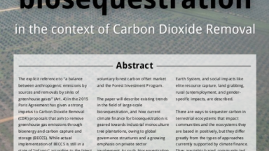 Working paper: The risks of large-scale biosequestration in the context of Carbon Dioxide Removal