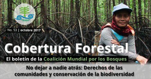 cobertura forestal 53