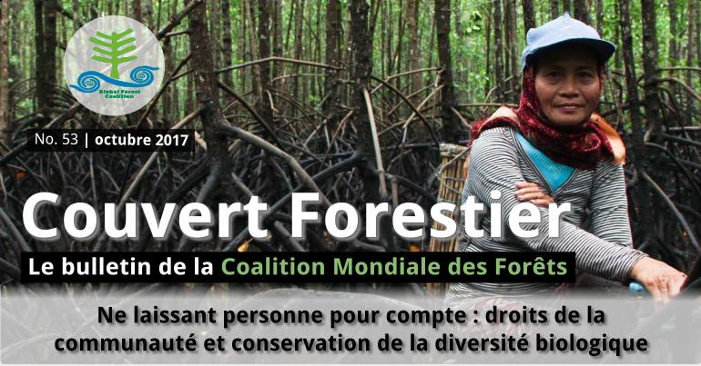 couverture forestiere 53