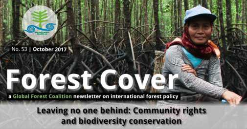 forest cover 53
