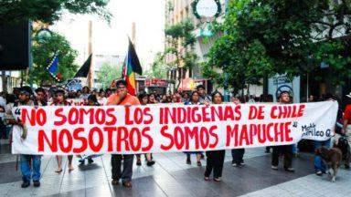 """La defensa de los bosques """"pasa por la recuperación de los territorios"""" Mapuches"""