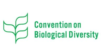 Submissions to the Convention of Biodiversity