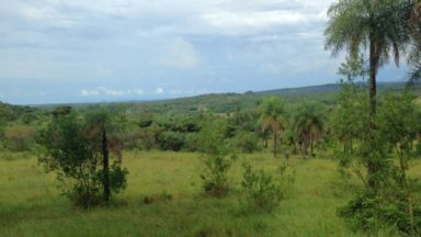 Green Climate Fund Supports Deforestation in Paraguay