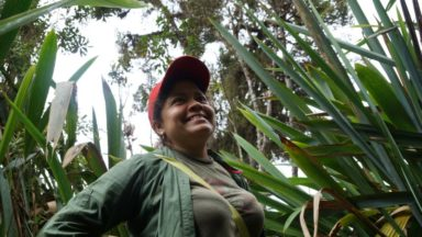 Community Conservation Resilience Initiative in Colombia