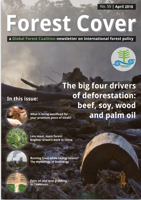 forest cover 55 big four drivers of deforestation