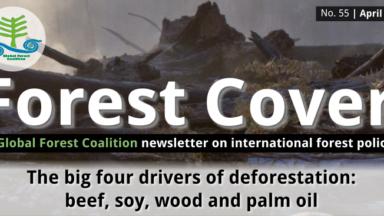 Couvert Forestiere 55 – Les quatres principaux moteurs de la déforestation: le bœuf, le soja, le bois et l'huile de palme