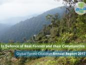 GFC Annual Report 2017