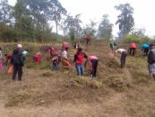 Community Conservation Resilience Initiative in Nepal
