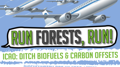 UN plans for aviation biofuels and carbon offsets condemned by 88 organisations worldwide