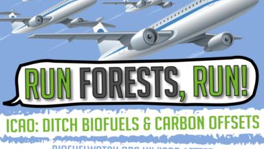 Planes de la ONU de usar combustibles para la aviación y compensaciones de carbono condenados por 87 organizaciones de todo el mundo