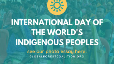 The rights of Indigenous Peoples are key to saving our global ecosystems