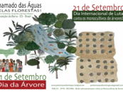 "Indigenous Peoples, Afro-descendants, and peasant farmers resist ""green deserts"" in Brazil"