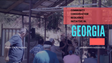 Community Conservation Resilience Initiative in Georgia