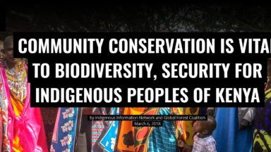 Community conservation is vital to biodiversity, security for Indigenous Peoples of Kenya